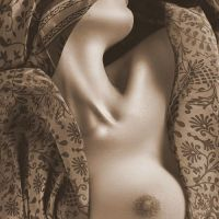 woman in damask tissue