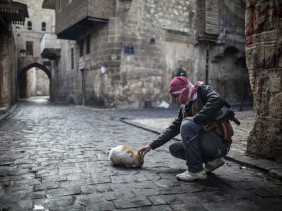 Syrian warrior and cat pet, Andoni Lubaki